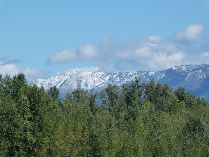 New snow on the mountains around Fernie