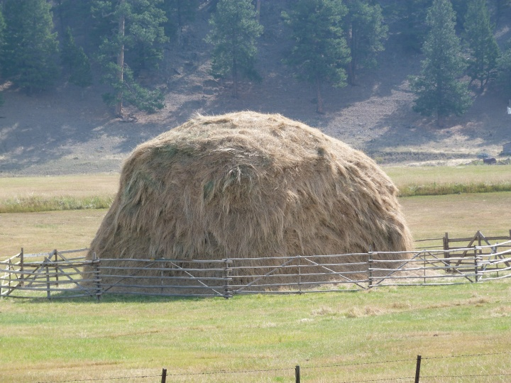 and they are used to make these! Haystacks in case you are wondering.